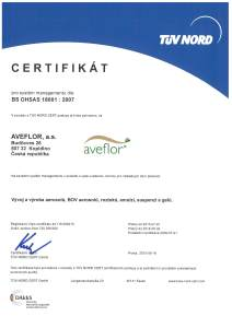 Certificate 18001 2015  CZ